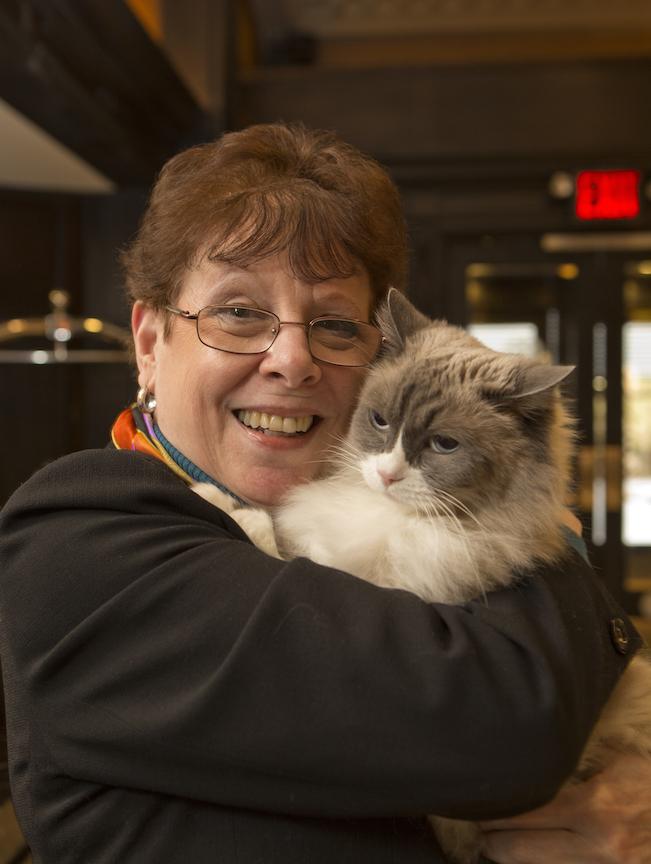 Картинки по запросу Matilda, the Algonquin Hotel Cat, is Celebrating Her Birthday And You're Invited